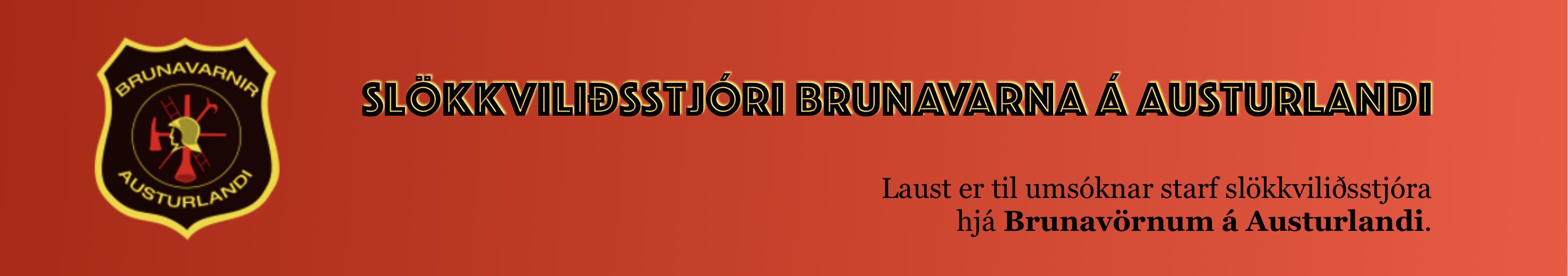 Brunavarnir Austurlands laust starf 2019