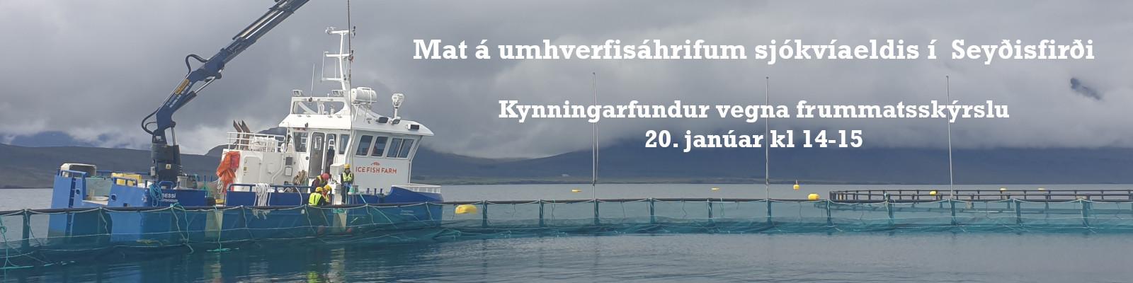 Fiskeldi Austfjarða - Fundur Janúar 2021